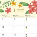 机の上にいつもハワイの花を。365日を彩るハワイ・フラワー・カレンダー2017が新登場!