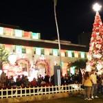 【HLCスタッフのおすすめハワイ】冬のハワイもまた格別!ダウンタウンでトロピカルなクリスマスを
