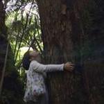 【暮らすように過ごす旅 】 癒しの地!人気ガイドが語るハワイ火山国立公園の3つの魅力