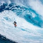【NO SURF, NO LIFE】サーフィンの聖地ノースショアのビッグウェーブと日本の意外な関係