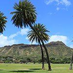 【Naturaction】朝日を浴びて心を整える!ハワイのおすすめモーニング・スポット