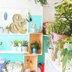 【Find Hawaii】モダンハワイのライフスタイルを提案。部屋に飾りたい観葉植物に出会えるお店