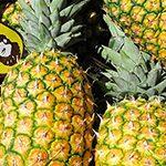 【Naturaction】太陽の恵みたっぷりの南国フルーツで、栄養バランスを整えよう!