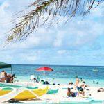 【ハワイに住もう】ハワイで感じる居心地のよさは、アジア人の多さから!?意外と知らない人口比率の現実