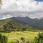 【ハワイに住もう】火山やマンゴーに関するアレルギーはご存知?実はアレルギーの宝庫・ハワイ
