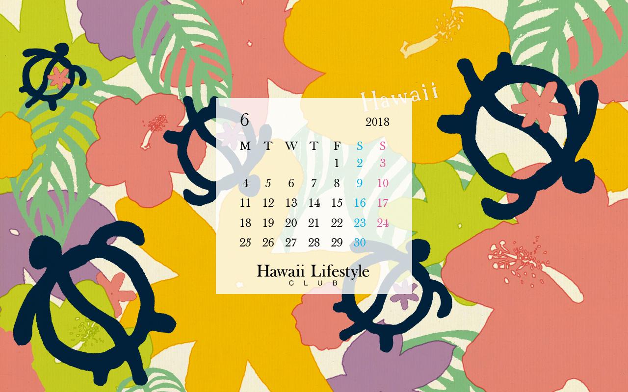 メルマガ会員特典 18年6月のブックカバー Hawaii Lifestyle Club
