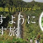 【暮らすように過ごす旅】長谷川久美子さんとハワイを巡るハワイ島5日間 2019年参加者募集!